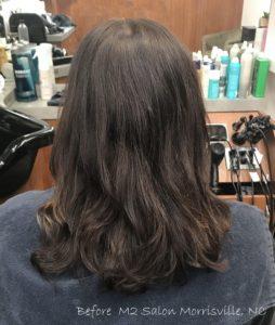 before-black-cherry-balayage-m2-salon-morrisville-nc-blog